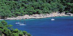 Grèce: au bonheur des îles Saroniques - Questions de femmes
