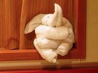 Meer dan 1000 afbeeldingen over handdoeken vouwen op Pinterest - Handdoeken, Handdoek Dieren en Kreeften