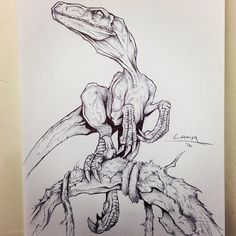Velociraptor doodle by Tyler Lamph Dinosaur Sketch, Dinosaur Drawing, Dinosaur Art, Animal Sketches, Art Drawings Sketches, Cute Drawings, Animal Drawings, Prehistoric Wildlife, Prehistoric Creatures