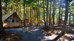 A Kejimkujik, vivez une expérience de canot-camping et logez au cœur de la nature, dans les tentes oTENTIK de Parcs Canada (à mi-chemin entre la tente et le chalet rustique). Photo Parcs Canada/Eric LeBel