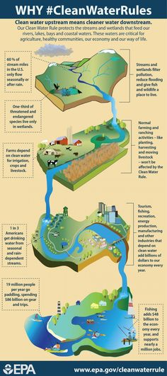An infographic detailing how the Clean Water Rule protects the streams and wetlands that feed our rivers, lakes, bays, and coastal waters. The importance of these waters for different stakeholders is emphasized.