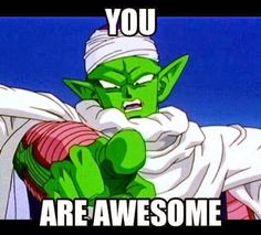 Why thank you, Piccolo. You're pretty alright yourself. #SonGokuKakarot