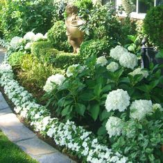 15 Amazing Front Yard Courtyard Landscaping Ideas - All For Garden Courtyard Landscaping, Hydrangea Landscaping, Front Yard Landscaping, Landscaping Ideas, Mulch Landscaping, Moon Garden, Dream Garden, White Plants, White Gardens