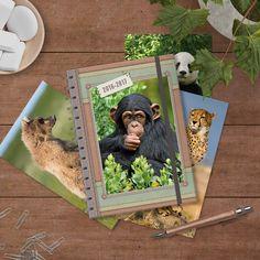 Onze Wildlife agenda, schooljaar 2016-2017. Met 9 lieve kaarten, 5 insteekhoezen en en een stickervel! kijk op onze site, http://www.dehobbit.nl  voor al onze agenda's, kalenders en familieplanners van 2016-2017.