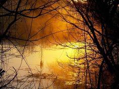 'Winter morning' by altavanemmenis More Images, Walking, Community, Celestial, Sunset, Park, World, Winter, Outdoor