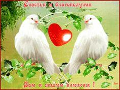 schastya-i-blagopoluchiya-vam-i-vashim-blizkim