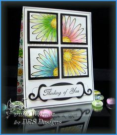 Flowers Squared IC278 WT316 by justwritedesigns - Cards and Paper Crafts at Splitcoaststampers
