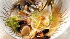 Fennel shellfish swim: discover the recipes of Femme Actuelle Le MAG