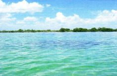 Stewart Land is also known as Punta Chital or Punta Tzul which is immediately set to the north of Balam Jungle properties by the Sea. It is a 3,587-acre sea frontage land area that lies on the N.E. coast of Belize; it is a total of 20 miles eastward from Sarteneja, 15 miles westward from the Great Barrier Reef of Bacalar Chico Marine Reserve - A World Heritage Site - and exactly 20 miles S.E. of San Pedro Island. See more at BelizeDC.com.