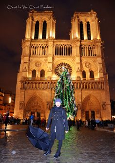 Make Your Own Fashion : New year in Paris....