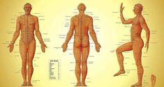 Σε κάθε μέρος του σώματος, υπάρχουν τουλάχιστον 26 ενεργειακά σημεία τα οποία μερικές φορές σταματούν και εμποδίζουν τη ροή της ενέργε...
