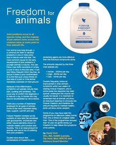 Did you know that aloe can be excellent for animals too? Let's not forget our 4 legged friends! Visit http://life140.de