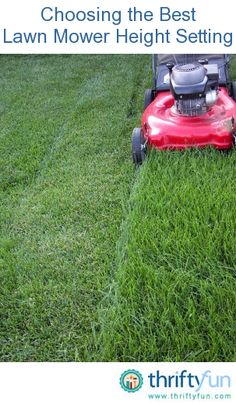 Cutting your lawn at the right mowing height is the single most important thing you can do to keep your lawn healthy. Mowing at the correct height reduces weed problems, contributes to a healthy root system and increases resistance to drought.