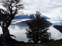 Torres del Paine. http://www.vivaexpeditions.com/south-america-tours/chile-travel/torres-del-paine-w-trek-2