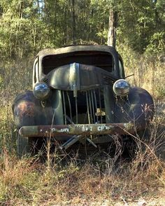Abandoned Cars, oldie, oldsmobile, rusty, curves, forrest, wheels, transportation, photograph, photo