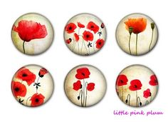 POPPY MAGNETS  Set of Six Magnets  1.25 inches by littlepinkplum