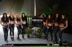 monster energy girls: 11 тыс изображений найдено в Яндекс.Картинках