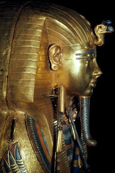 When was King Tut's mummy found, What killed him and Who died from King Tut's curse? Ancient Art, Ancient Egypt, Ancient History, King Tut Curse, Egypt Tattoo Design, Egyptian Food, Queen Nefertiti, Egypt Art, Vulture