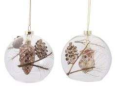"Amazon.com - 12 Rustic Country Pine Cone and Owl Clear Glass Ball Filled Christmas Ornaments 4.5"" -"