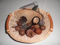 la cesta (o la caja) de la naturaleza
