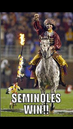 254 days have passed since my beloved Seminoles last took the field. Tonight at my NCAA football season begins in ernest as the Seminoles of Florida State take on the Hurricanes of Cu… Florida State Football, College Football Teams, Florida State University, Football Baby, Florida State Seminoles, Football Season, Football Helmets, Seminole Football, Oklahoma Sooners