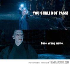 Confused Dumbledore. Harry Potter v. LOTR