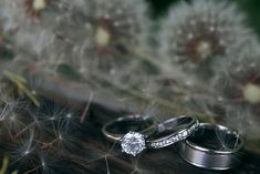 Dandelion seeds and wedding rings at Slieve Gullion. A real wedding by Couple Photography Wedding Shoes, Wedding Rings, Dandelion Seeds, Legends And Myths, Couple Photography, Real Weddings, Engagement Rings, Diamond, Couples