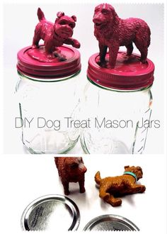 DIY Dog treat mason jars - in four simple steps you can make this awesome treat holder Dog Grooming Salons, Grooming Shop, Pet Grooming, Poodle Grooming, Diy Dog Treats, Diy Dog Gifts, Dog Crafts, Animal Projects, Diy Projects Dog