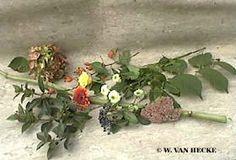 Bloemchikken: Open driehoeksschikking met herfstsfeer Gerbera, Plants, Plant, Planting, Planets