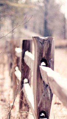 Country Suburban Forest Fence Bokeh iPhone 6 wallpaper
