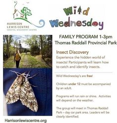 from @harrisonlewiscentre  We are very excited for our first Wild Wednesday family program is tomorrow at 1pm! The topic is insects!  meet us at Thomas Raddall Provincial Park tomorrow for a fun filled afternoon of insect collecting! . Check out @halifaxnoiseKids . #halifaxnoisekids #halifaxnoise #visitnovascotia #wearens #local #summerevents