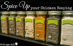 Spice up your Chicken Keeping with garlic, oregano, turmeric and ginger. Via Fresh Eggs Daily