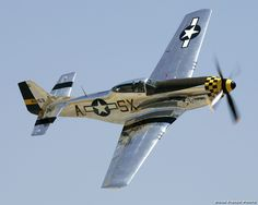 P51 Mustang. This what the Ford Mustang is named for. The airplane was named for the wild southwestern US horse.