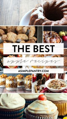 Enjoy national apple month by trying some of the best apple recipes around from your most trusted food bloggers! Deliciousness abounds, so get cooking!