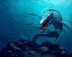 Mosasaurus conodon and Baculites
