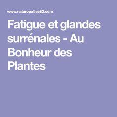 Fatigue et glandes surrénales - Au Bonheur des Plantes