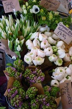 Farmer's market flowers ~ One of my favorite things to do!! Once I got to go to the Taipan, Taiwan morning Flower Market to buy flowers for a wedding! It was amazing!!! SO many gorgeous tropical flowers and colors we had never seen!! It was Awesome but I love my local markets also!