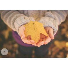 Autumn Family session | DANILION PHOTOGRAPHY