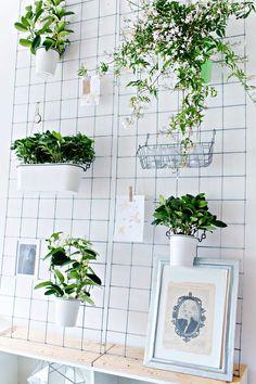 Iedereen houdt ervan om zijn huis met groene items te vullen. Ook Lana Red is groot fan van de groene trend en omarmt hem met een DIY plantenrek!