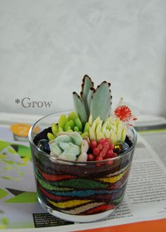 This could be a great project with the kids. I remember filling bottles with sand when I was little. Adding succulents just makes it better!