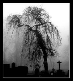 graveyard. by ~candyflesh on deviantART