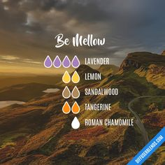 Be Mellow - Essential Oil Diffuser Blend