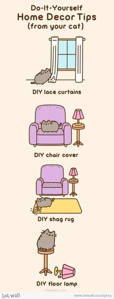 An Internet Cat's Tips On Decorating Your Home.