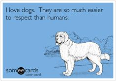I love dogs. They are so much easier to respect than humans. | Confession Ecard | someecards.com