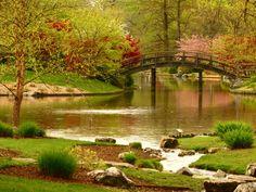 Missouri Botanical Gardens, Japanese Gardens within   St. Louis, Missouri