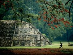 Honduras, Mayan Ruins at Copan.
