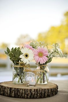 http://www.childrentoystores.com/category/gerber/ Gerber Daisy and Baby's Breath Centerpieces
