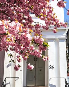 News : Today's Articles of Interest from Around the Internets Home Design, Design Projects, Floral Wreath, Bloom, Glamour, Exterior, Wreaths, Garden, Flowers