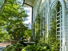Trellises are a great option for semi-privacy, especially with plants growing up the side.