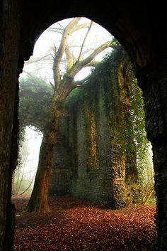 Church ruin in Norfolk, England